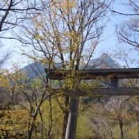 奥上高地・明神池へ(7)
