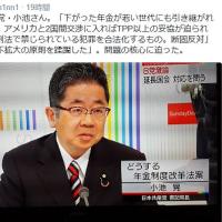 テレビより/NHK日曜討論の共産党・小池さん。「下がった年金が若い世代にも引き継がれる」
