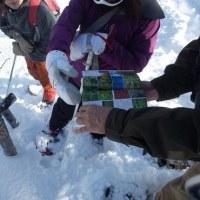 「はじめての自然散歩」2017冬開催のお知らせ