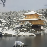 京都便り、雪の京都 A letter from Kyoto, Kyoto in snow