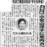 小宮山大臣は専業主婦が嫌い。専業主婦をなくせば、困るのは幼い子供たち