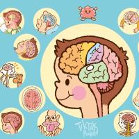 イラスト図鑑【  脳のひみつ  】その1