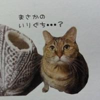ノート型 ウチの子メモ帳3 Handmade-93