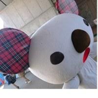 餃子祭り!わっしょい(*^∀^*)
