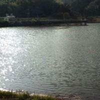 河内の水瓶