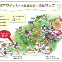 2016=夏の神戸ワイナリー句会