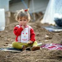 シリア難民受入れについてQ&A