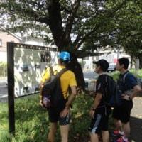 なんとなく箱根駅伝3区ラン