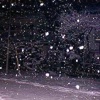 大雪の予報