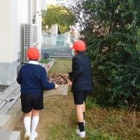 12/9  春に備えて・・・