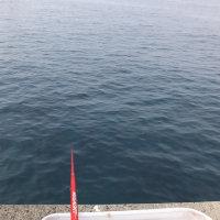釣に行った