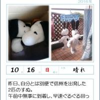 161016 横浜へようこそ(^^)//