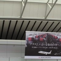 2016夏松竹 ANOTHER