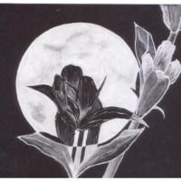 詩画・月見る月[竜胆(りんどう)合せ]