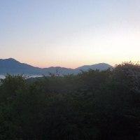 天空のチューリップ祭り・富士芝桜まつり