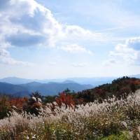 過去の写真~紅葉(比婆道後帝釈国定公園・吾妻山)