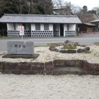 アサタケオ(12)