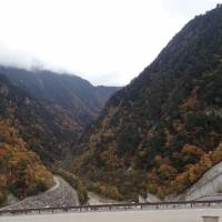 長野の紅葉めぐり:高瀬渓谷の紅葉