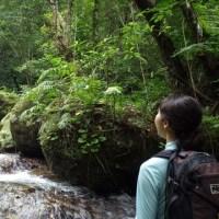 ユツンの滝|西表島