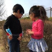 幼稚園のお友達、大集合‼️