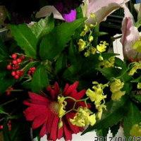 花と格闘する、の巻