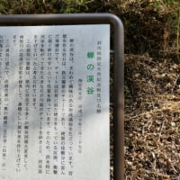 小さな旅 群馬県 南牧村 上野村 神流町