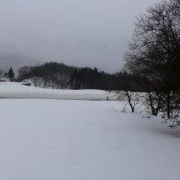今日の天気 雨 冷たい雨  ほん今雪に