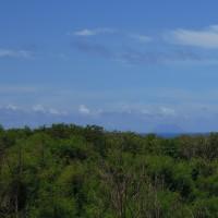 2016年小笠原村硫黄島慰霊墓参(227)南集落の辺りの森と南硫黄島