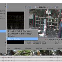 4K-3D撮影を行い…Vegas Pro 13 で Blu-ray 3Dコンテンツを仕上げる…