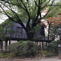 パワースポット 乃木神社