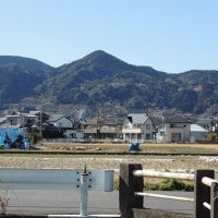 フジスカイビュー  富士山の見える観覧車