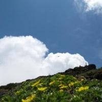 11/06/19 鳥海山 祓川