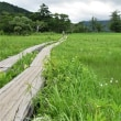 夏のプチ気まま旅 9日目(尾瀬ヶ原)