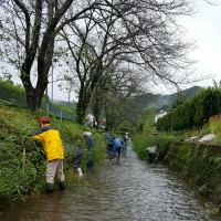 村役で河川清掃作業