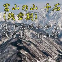 創楽 剱岳の展望台 千石城山・登山(残雪期)