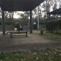 大泉緑地公園