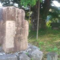 醍醐桜の木