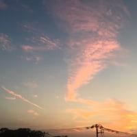 秋の夕空とマロン