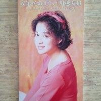 「大好きをあげたい」 川越美和 1992年