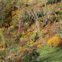 晩秋の手稲山