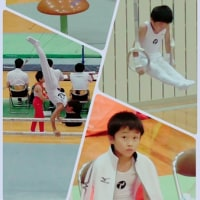 10日・拓坊 第15回四国小学生体操競技選手権大会