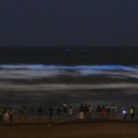 鎌倉・江の島の海が光っております。