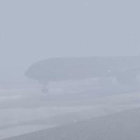 大雪でほとんど前が見えません