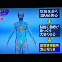 4/26  岩瀬先生いわく、自律神経は呼吸で修正できる。