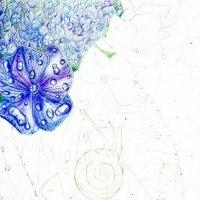 途中経過2 (紫陽花とカタツムリ)
