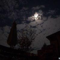 今宵は月を眺めてみる