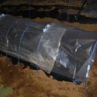 寒さ対策 プランターを温室に