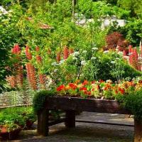 大阪府立花の文化園・温室からブラブラと・・・6