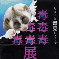 22日のHEP FIVEの〝も う ど く 展〟