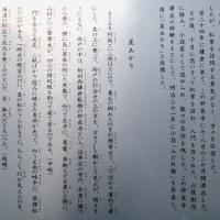 泉鏡花 鎌倉での足跡